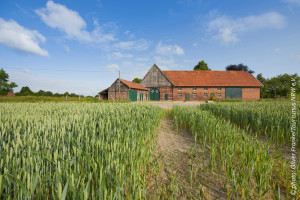 photo: Farms in the Muensterland region. Copyright photo Oliver Franke/Tourismus NRW e.V.